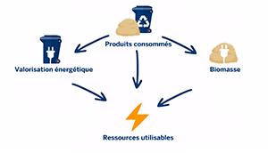 L'économie circulaire : quelle voie pour un écosystème vertueux ?