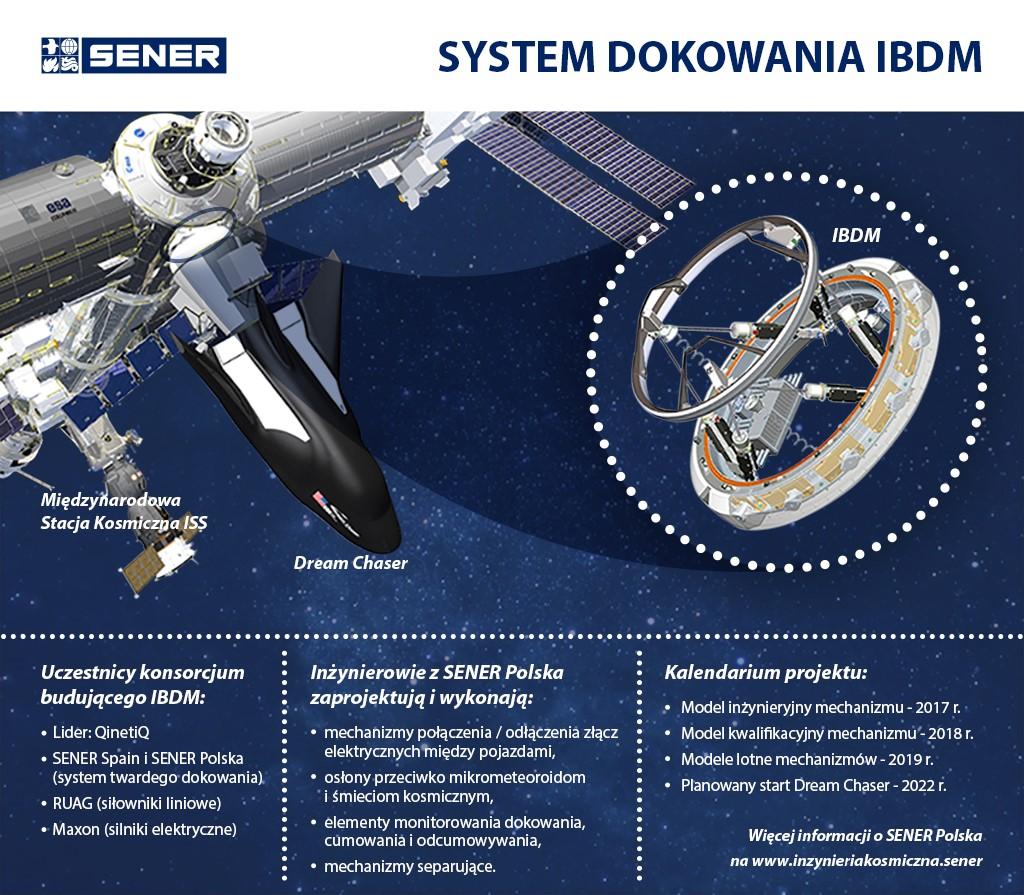 IBDM infograph