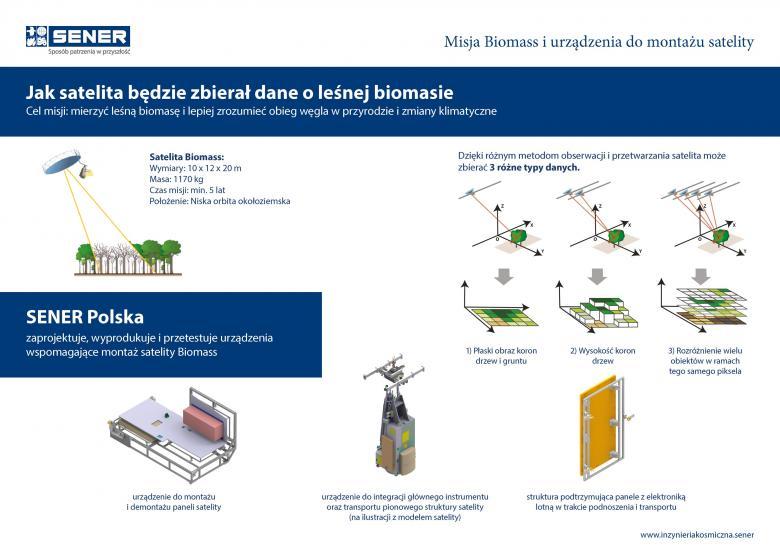 infografia biomass pl